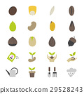 Seeds and Gardening Flat Color Icons 29528243