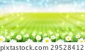 flower, flowers, tender 29528412