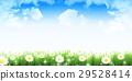 flower, flowers, grass 29528414