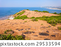 Chapora Fort in Goa 29533594