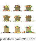apple, fruit, vector 29537271