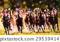 แข่งม้า,ม้า,สัตว์ 29539414