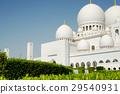Sheikh Zayed Grand Mosque, Abu Dhabi 29540931