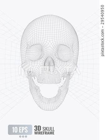 3D wireframe skull front view on white  BG 29540950
