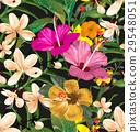背景 開花 花朵 29548051