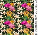 背景 開花 花朵 29548052