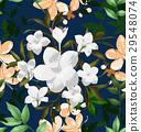 花紋 圖樣 樣式 29548074