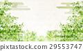 tender green, verdure, botanic 29553747