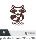 Raccoon symbol icon design. 29555204