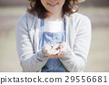 女性 女 女人 29556681