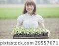 สาวเกษตร 29557071