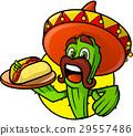 cactus mexican vector 29557486