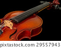 Old violin on a black background 29557943