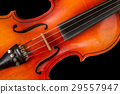 Old violin on a black background 29557947