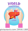Hand Hold Liver Health World Day Global Holiday 29561188
