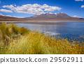 Altiplano laguna in sud Lipez reserva, Bolivia 29562911