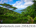 view of Opunohu Bay and lagoon in Moorea Island 29562936