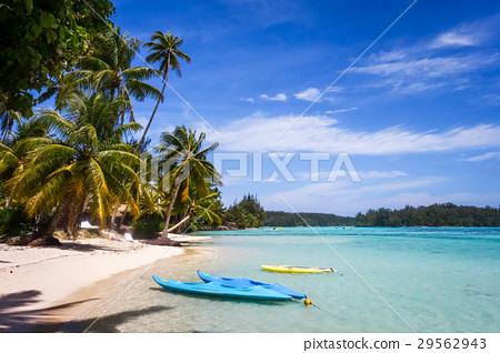 Paradise tropical beach and lagoon, Moorea Island 29562943