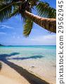 Paradise tropical beach and lagoon, Moorea Island 29562945