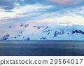 남극 29564017