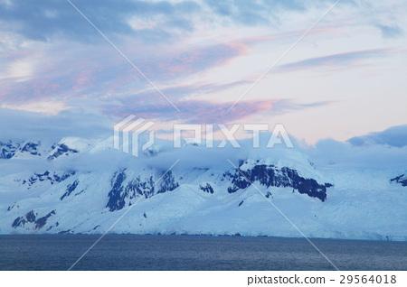 Antarctic 29564018