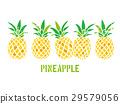 파인애플, Pineapple, 벡터 29579056