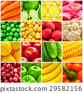 Collage from fresh fruits and vegetables 29582156