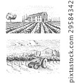 Vintage engraved, hand drawn vineyards landscape 29584342