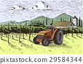 Vintage engraved, hand drawn vineyards landscape 29584344