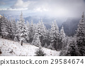 Christmas background with snowy fir trees  29584674