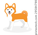 Akita Inu breed dog icon, flat, cartoon style 29584790