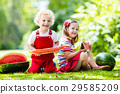 Kids eating watermelon in the garden 29585209