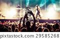 audience, festival, music 29585268