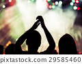 crowd at concert - summer music festival 29585460