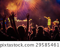 crowd at concert - summer music festival 29585461