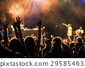crowd at concert - summer music festival 29585463