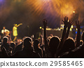 crowd at concert - summer music festival 29585465