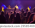 crowd at concert - summer music festival 29585469