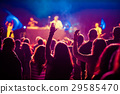 crowd at concert - summer music festival 29585470