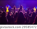 crowd at concert - summer music festival 29585472