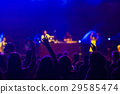 crowd at concert - summer music festival 29585474
