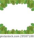 樹葉 葉子 框架 29587188