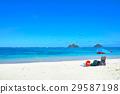 하와이, 파라솔, 바다 29587198