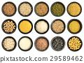 種子 玉米 穀物 29589462