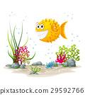 underwater, sea, ocean 29592766