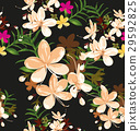 floral 29592825