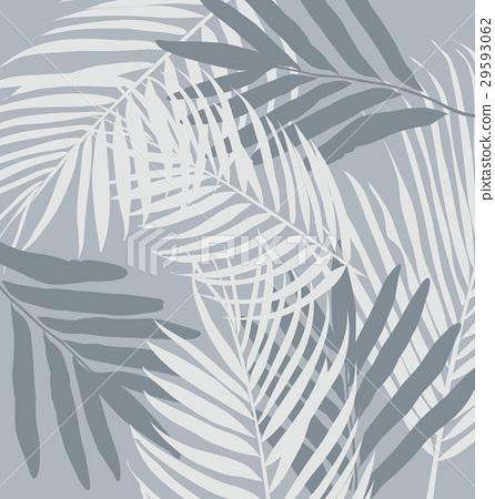 leaf 29593062