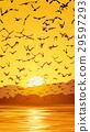 Vertical illustration flock of birds at sunset. 29597293