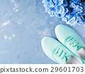 Pair of green woman canvas sneaker blue background 29601703