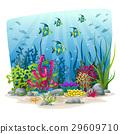 水下 景色 風景 29609710